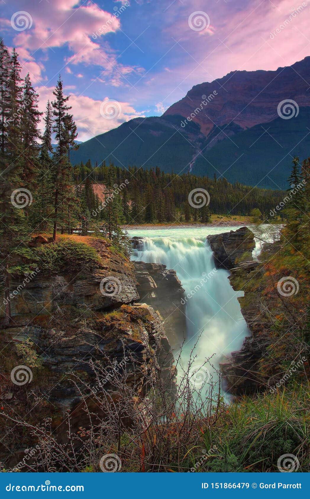 Belle cadute di Athabasca in Alberta