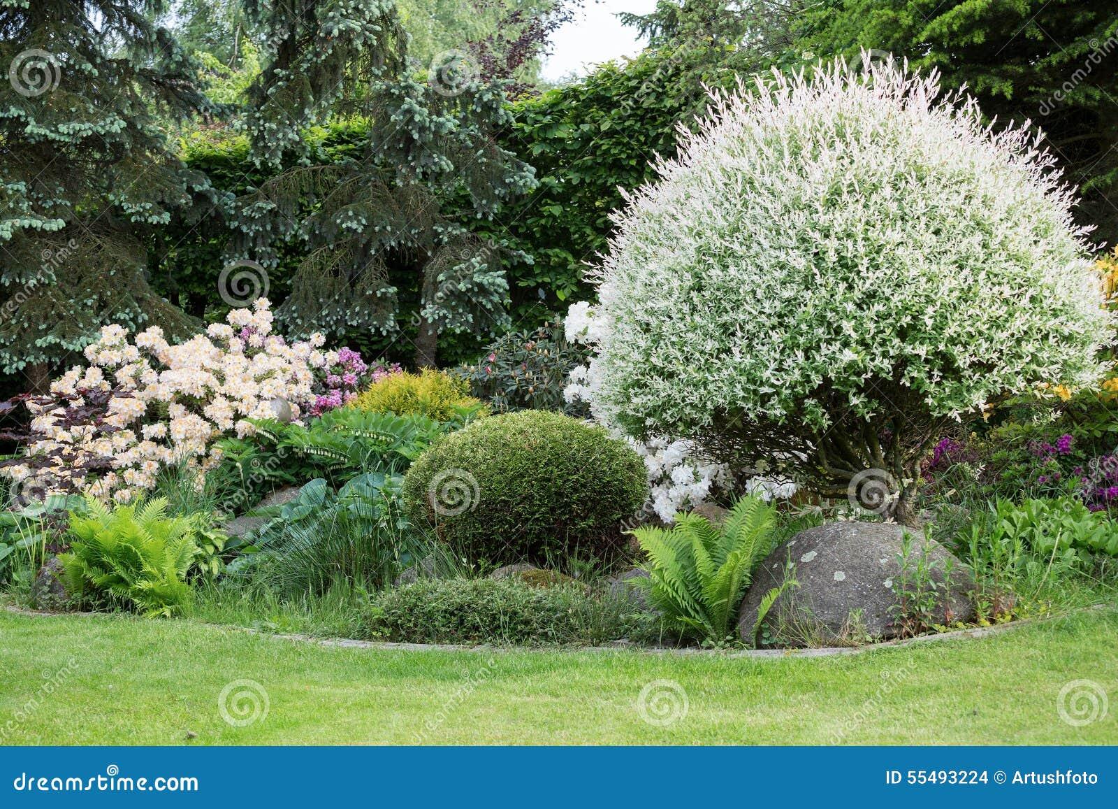 Belle conception de jardin de ressort avec le rhododendron for Conception jardin