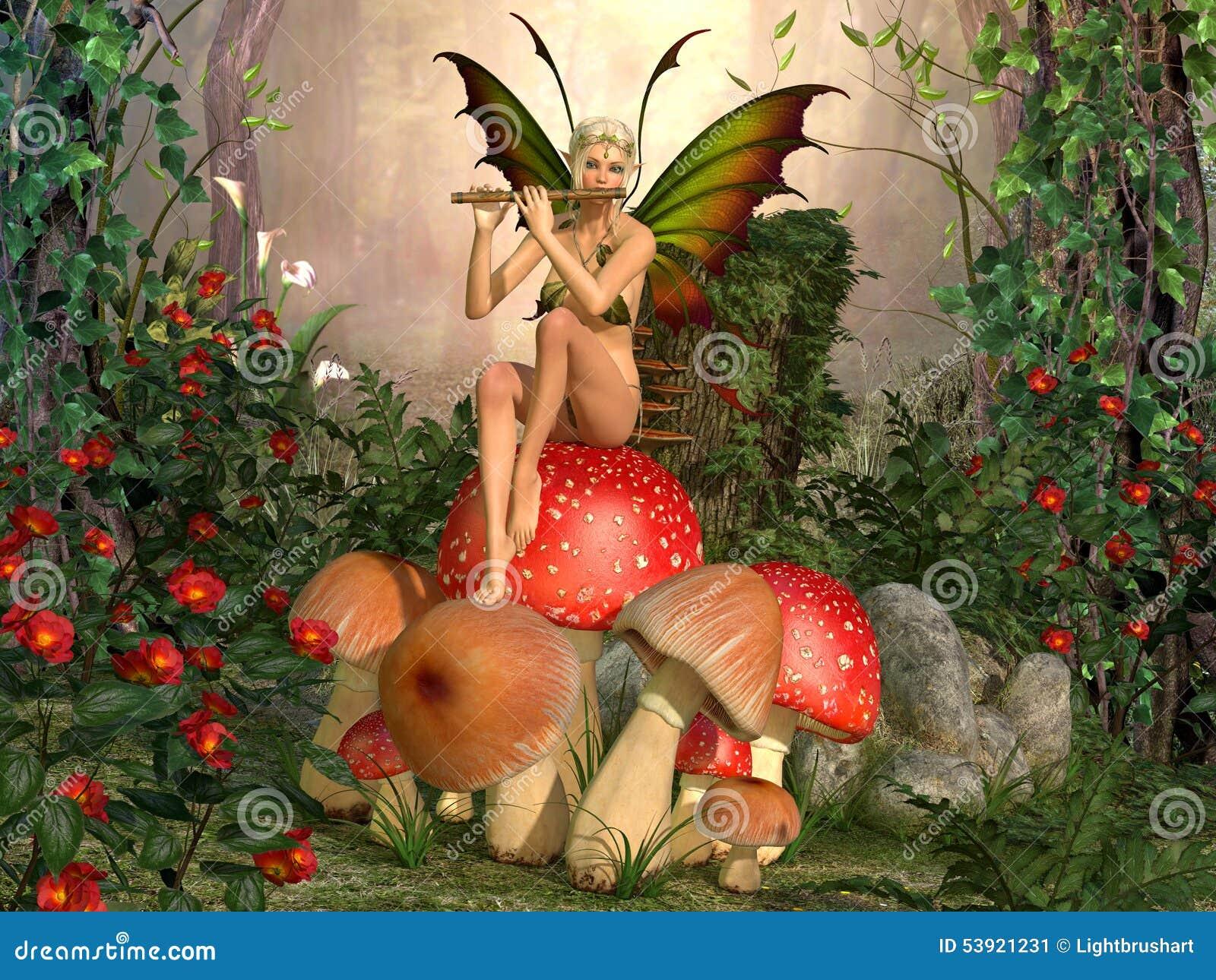 Belle femme d Elven avec la cannelure