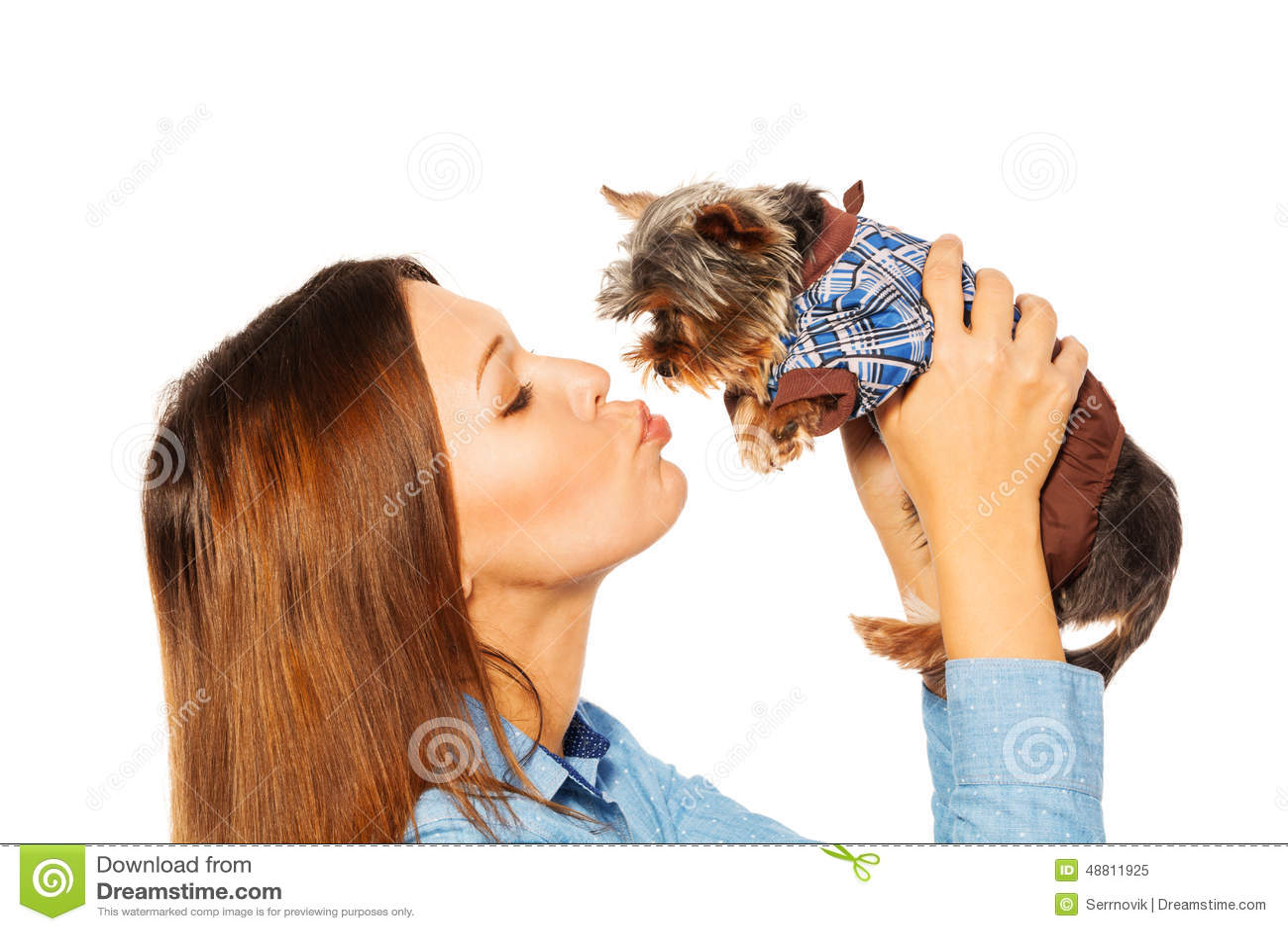 Belle femme Yorkshire Terrier brun de baiser