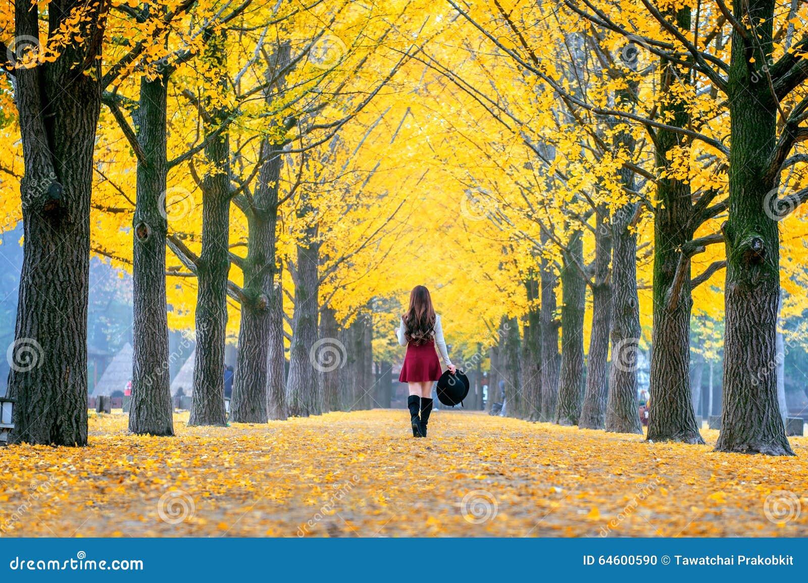 Belle fille avec des feuilles de jaune en Nami Island, Corée