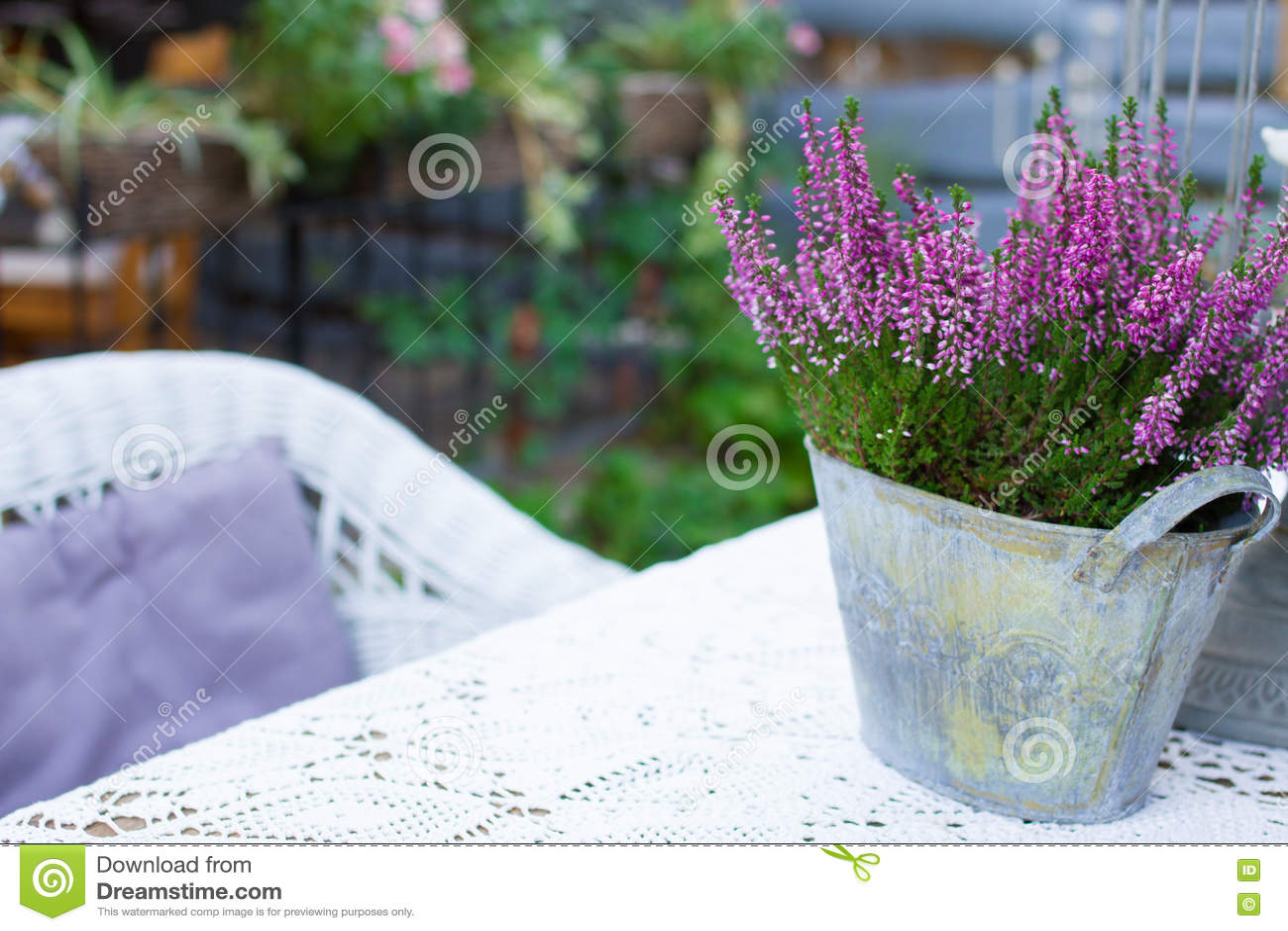Belle fleur de source