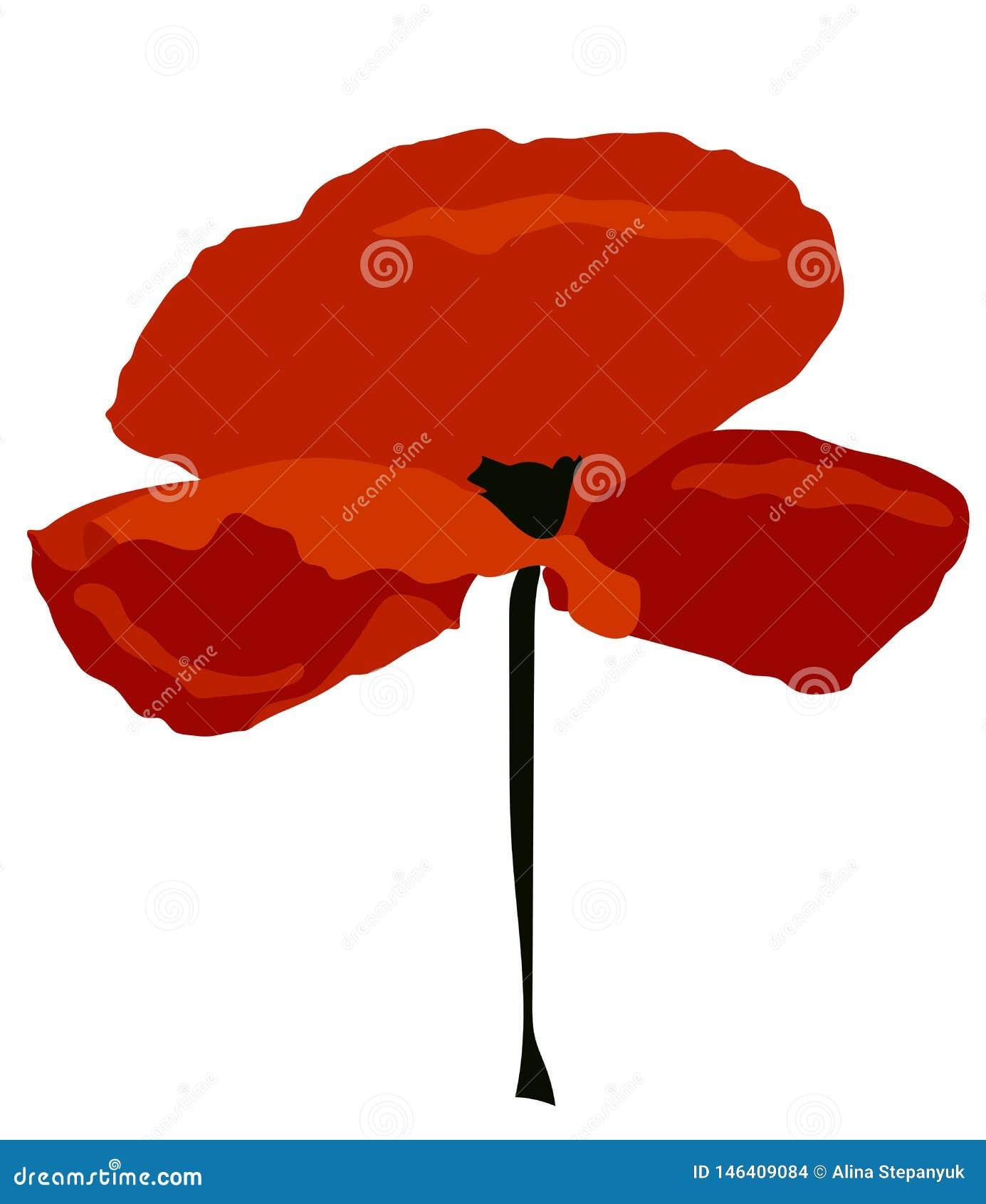 Belle fleur rouge de pavot Approprié au logo, aux cartes, aux illustrations et à plus