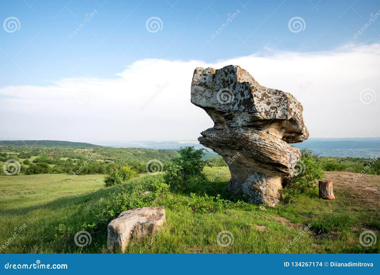 Belle formation de roche de phénomène naturel - champignon