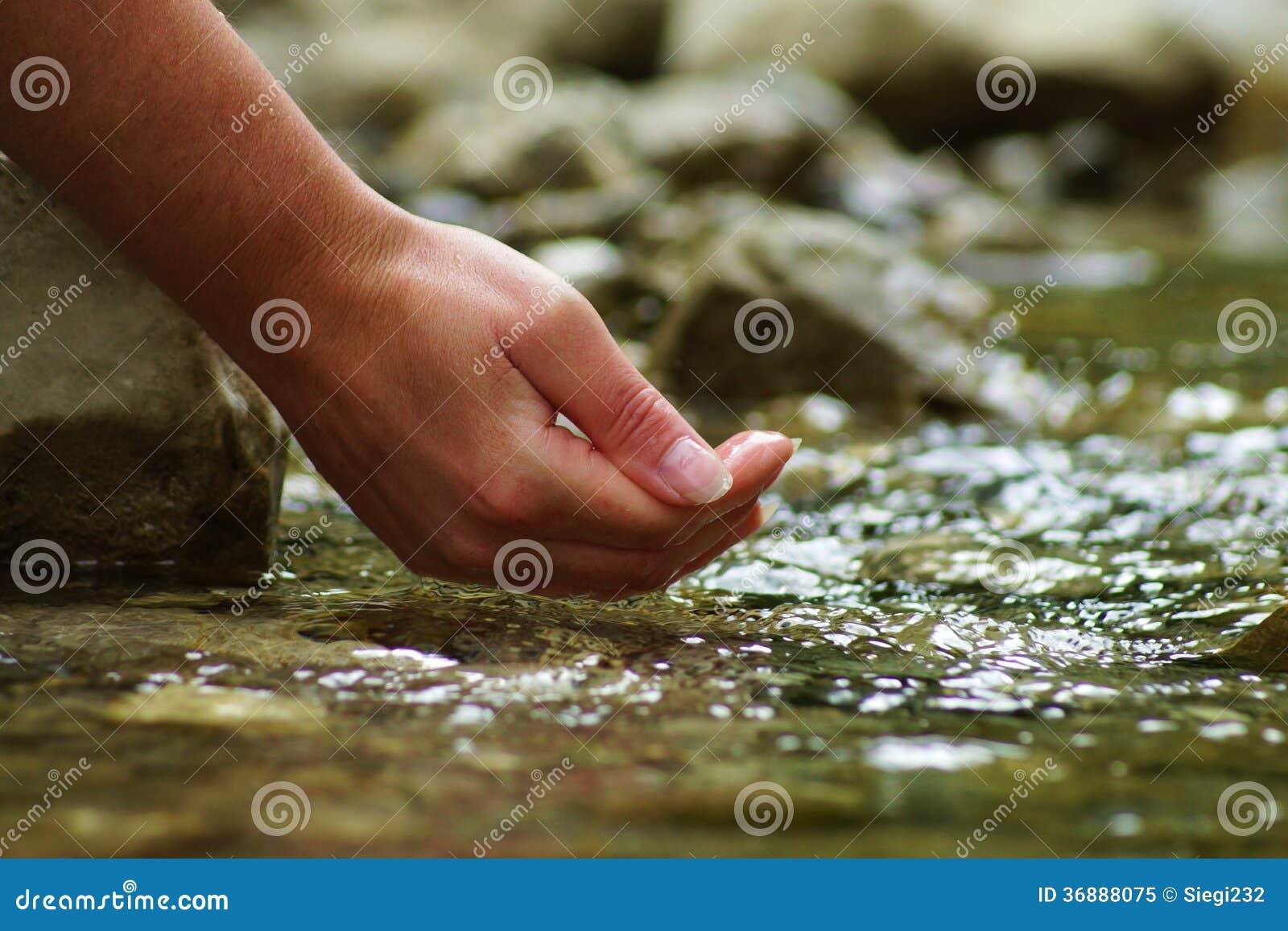 Download Belle mani della donna immagine stock. Immagine di piacevole - 36888075
