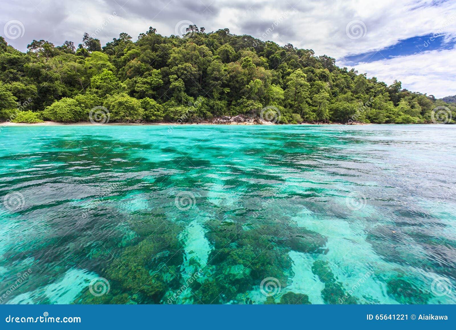 Belle mer clair comme de l eau de roche à l île tropicale
