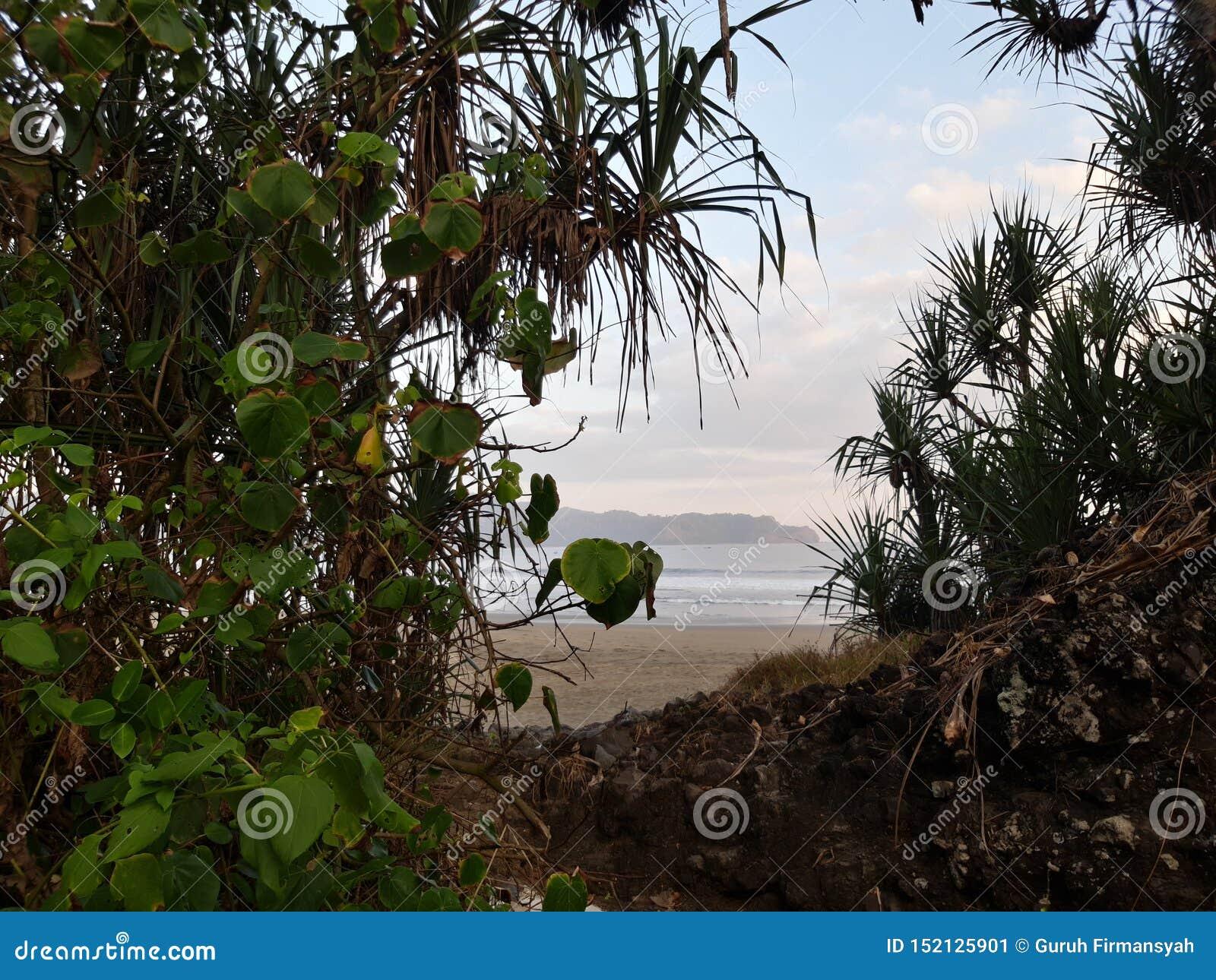 Belle plage cachée
