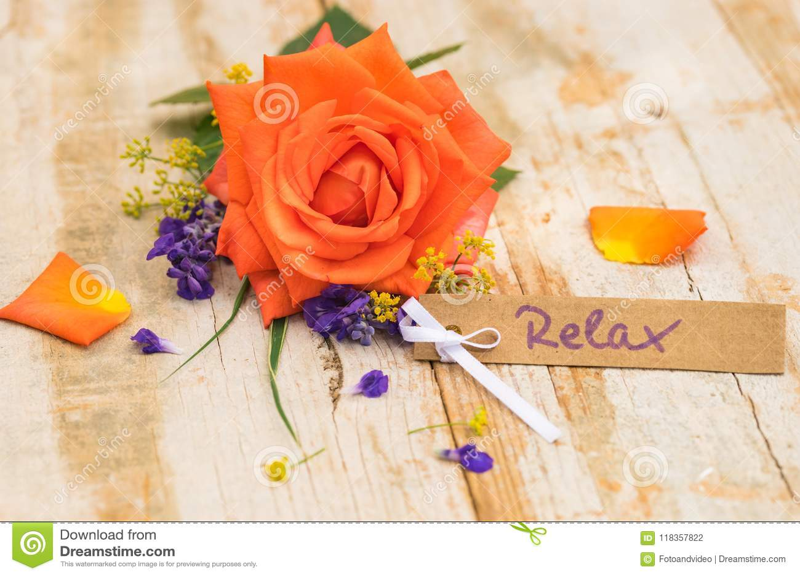 Belle Rose De Couleur Orange Avec La Carte Cadeaux Le Bon Ou Le Bon