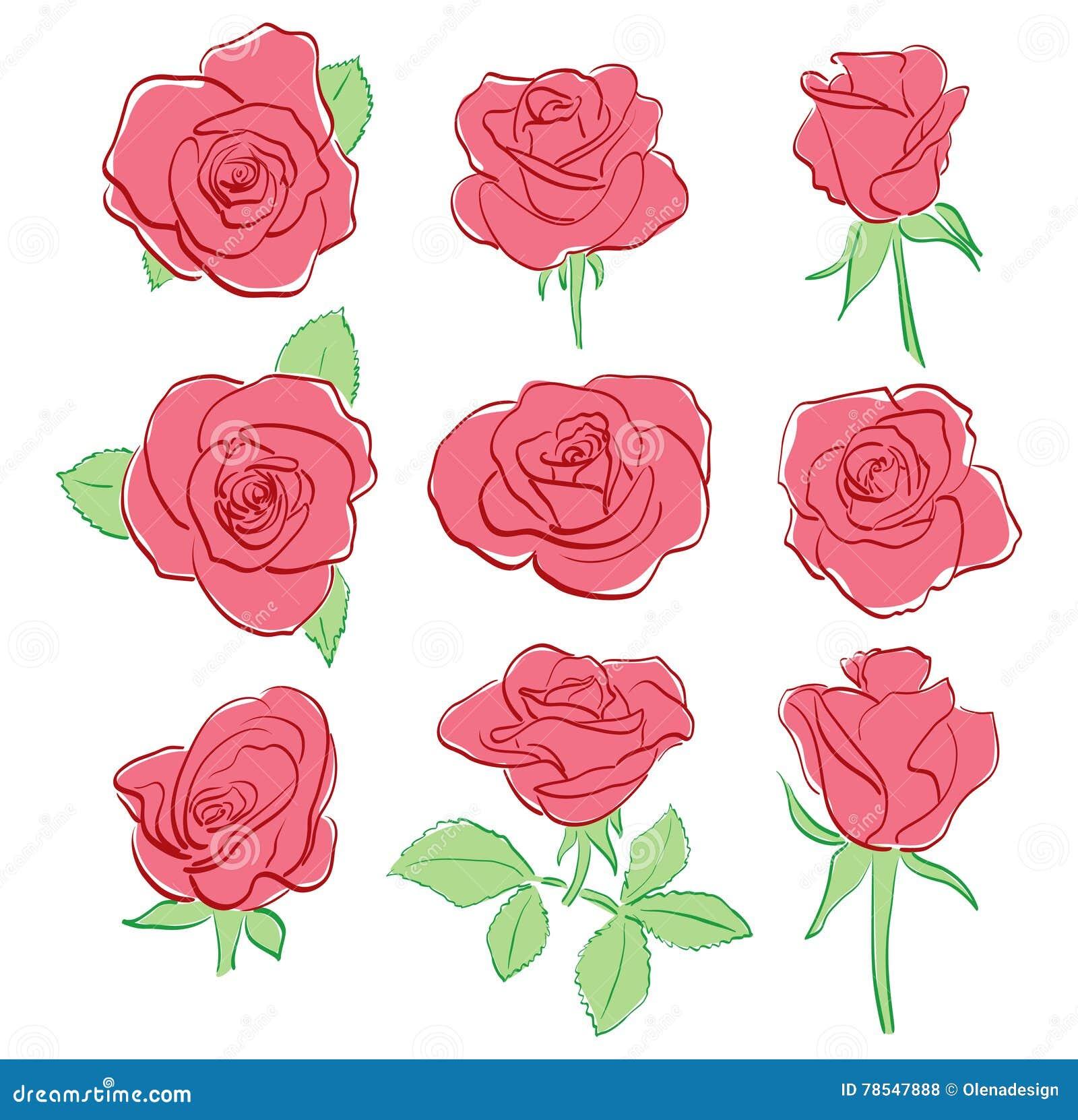 Belle Rose Rosse Insieme A Mano Disegno Illustrazione Vettoriale