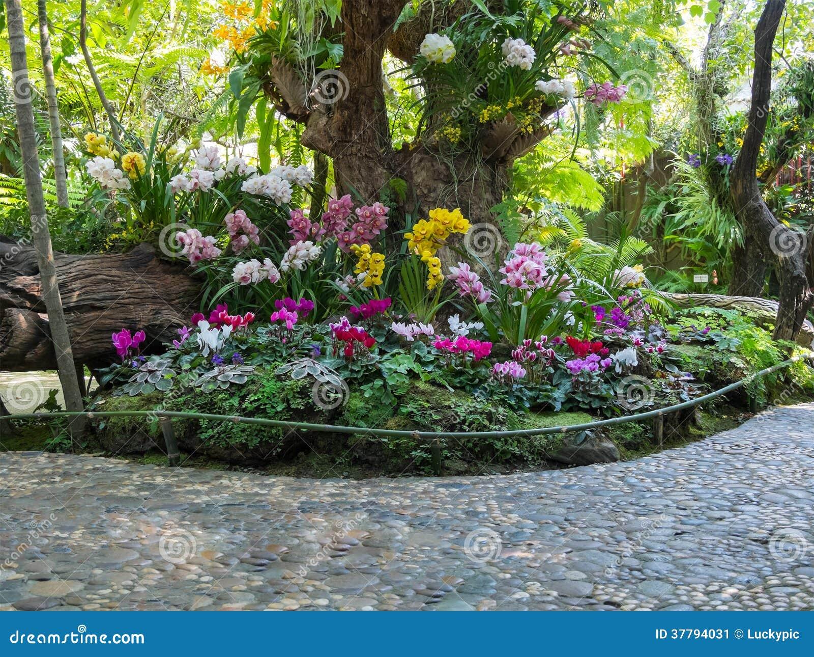 Belle Sc Ne De Parc De Jardin D 39 Arri Re Cour Image Stock Image 37794031