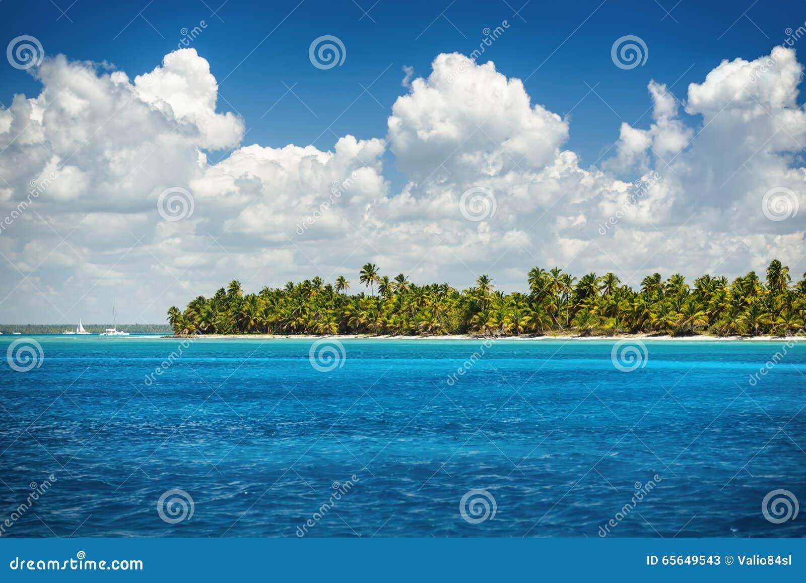 Belle vue vers la plage tropicale, île de Saona, Dominique