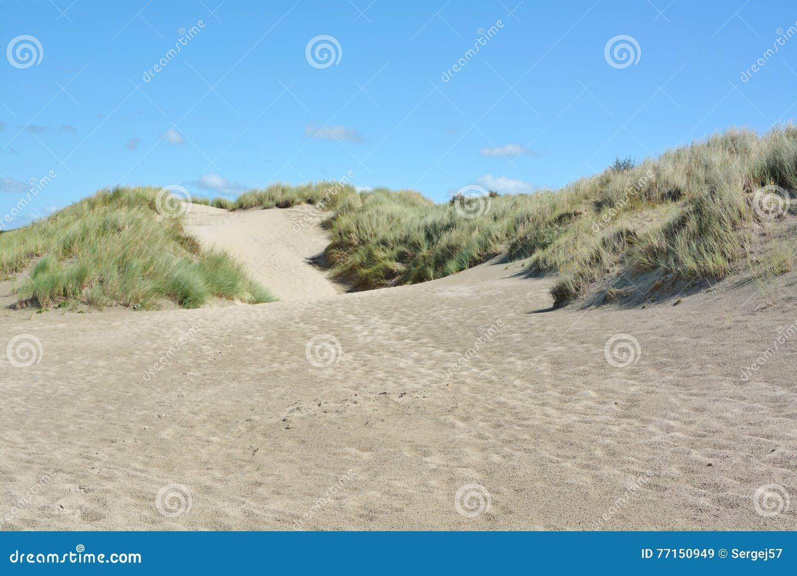 Belles dunes de sable