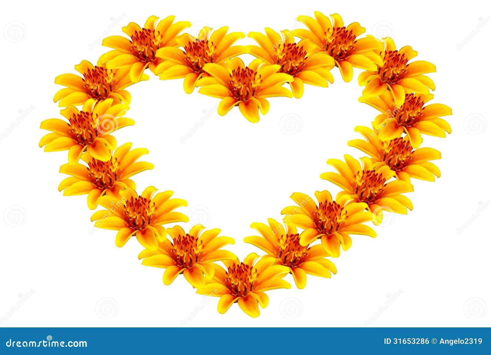 Belles fleurs jaunes en forme de coeur image libre de droits image 31653286 - Fleurs en forme de coeur ...