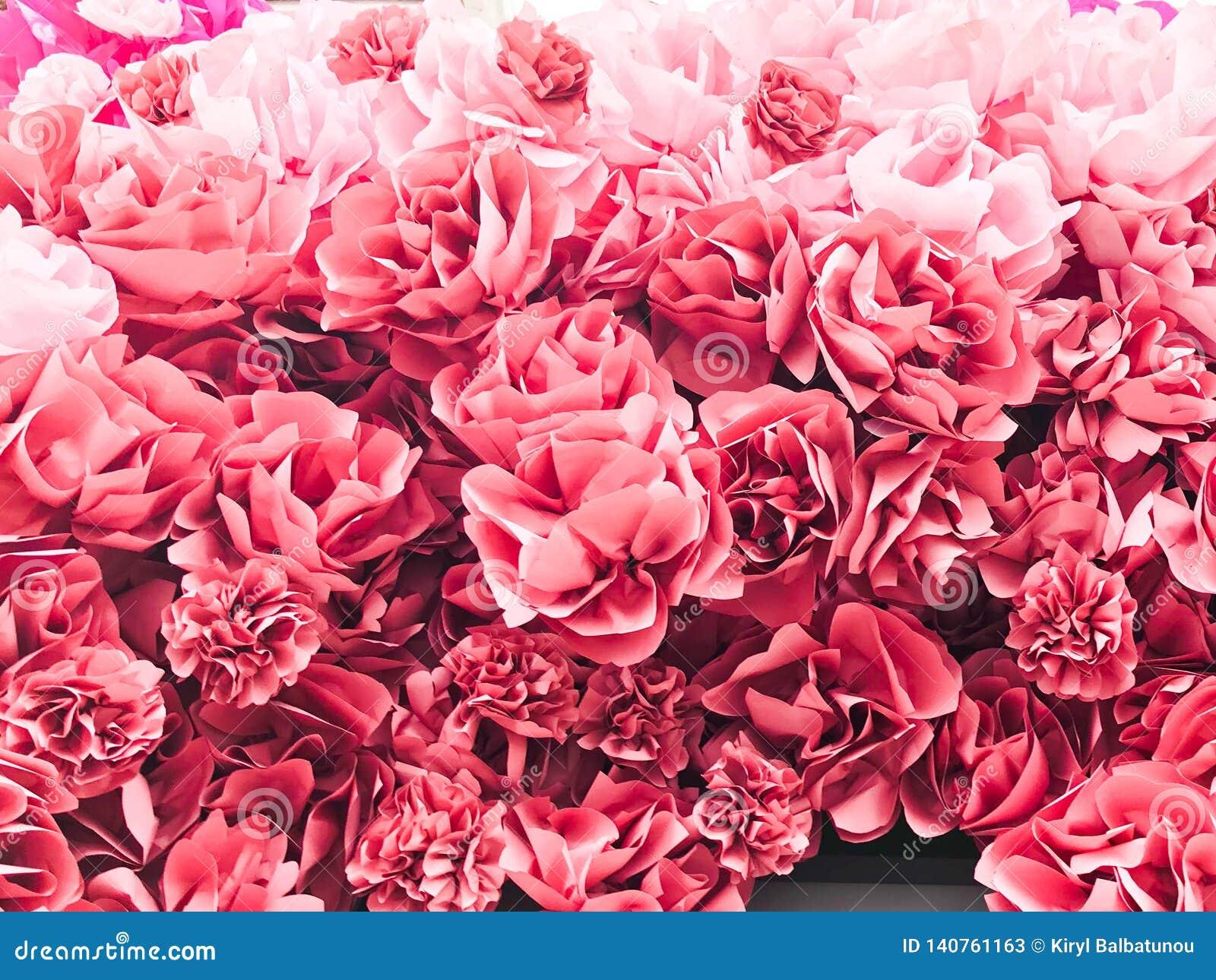 Belles fleurs luxuriantes naturelles de rose rouge des pétales roses de pivoines Le fond Texture