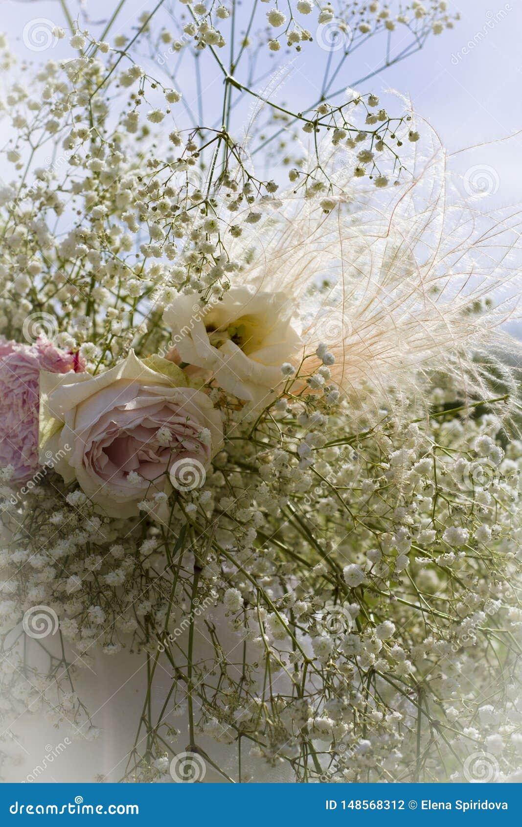 Belles grandes roses dans une fin de bouquet sur un fond brouill?