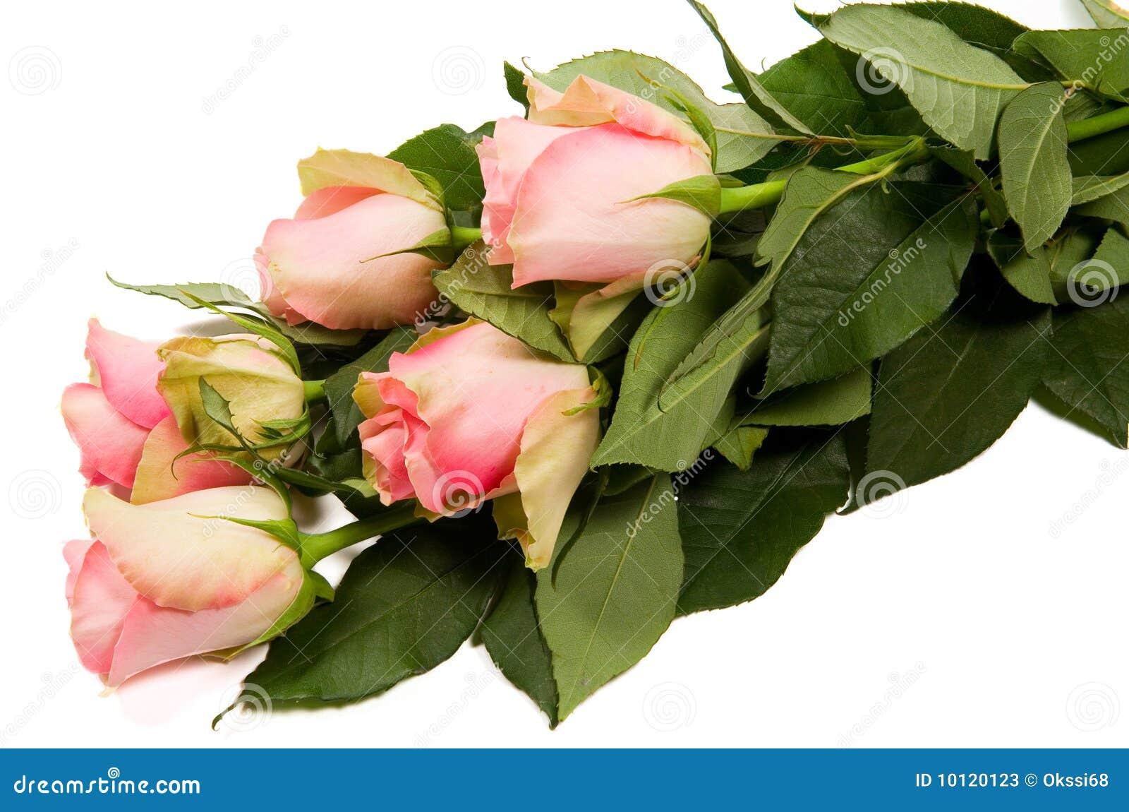 Belles roses de bouquet