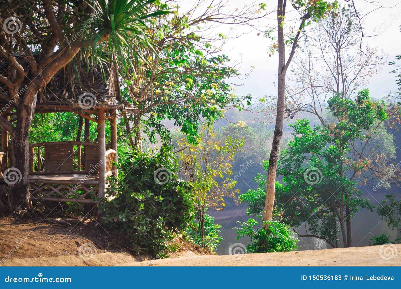 Belles vues scéniques de la nature verte riche avec des palmiers, une hutte sur la rivière en Thaïlande exotique