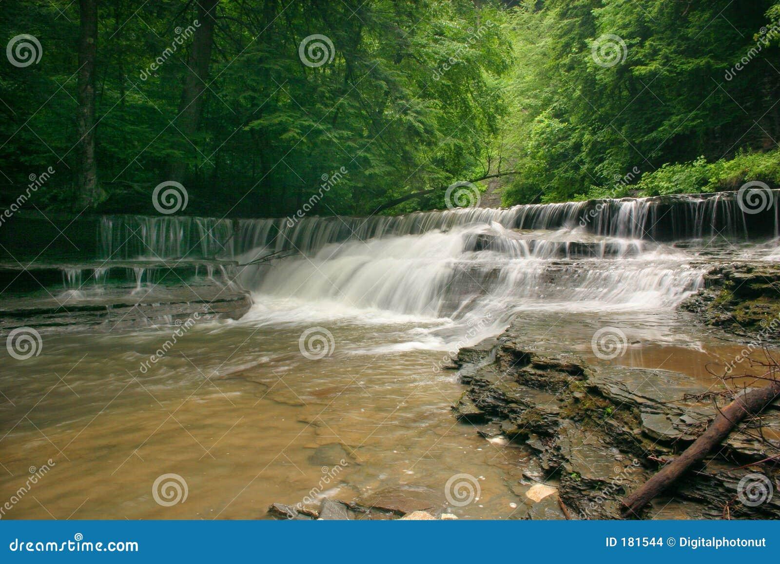 Belleza de la cascada