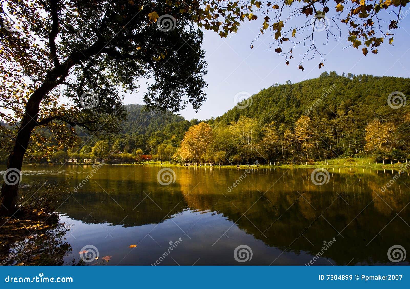 Bello autunno