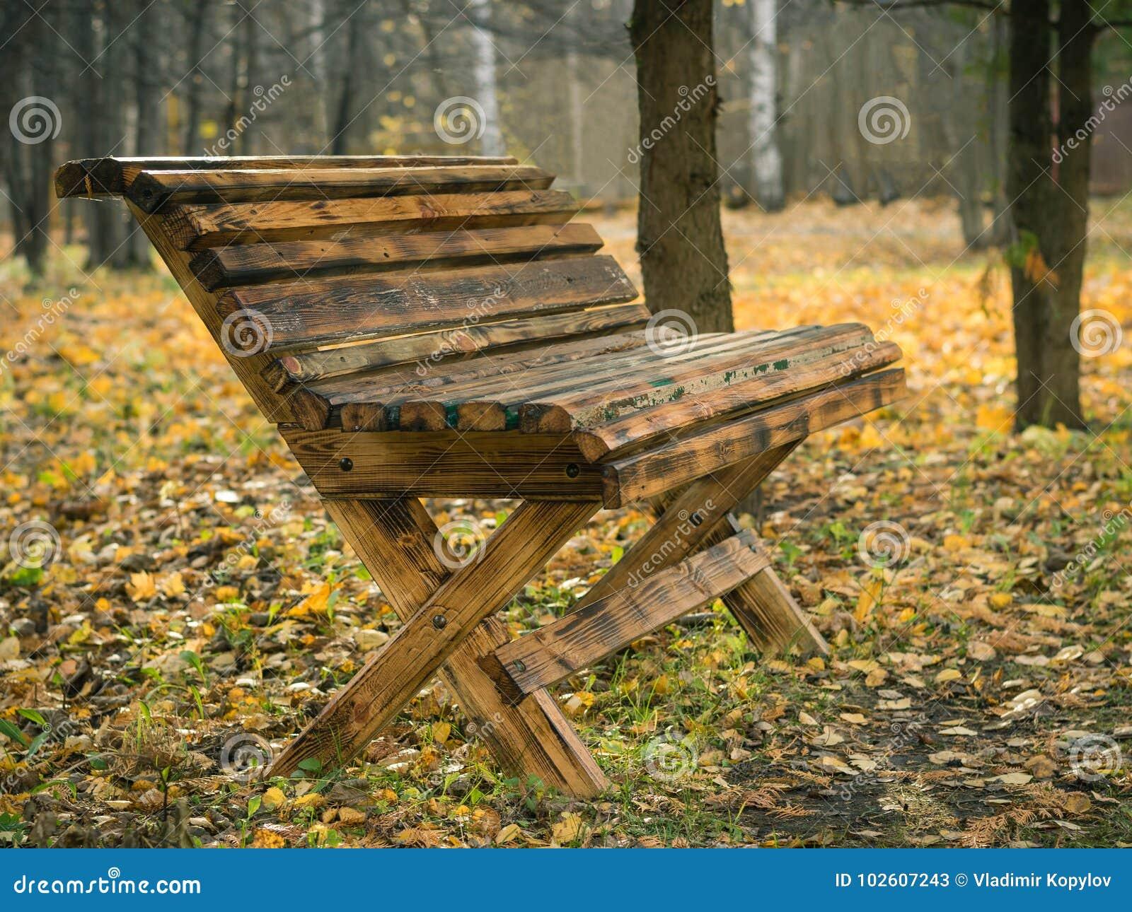 Bello banco di legno nel parco della città di autunno