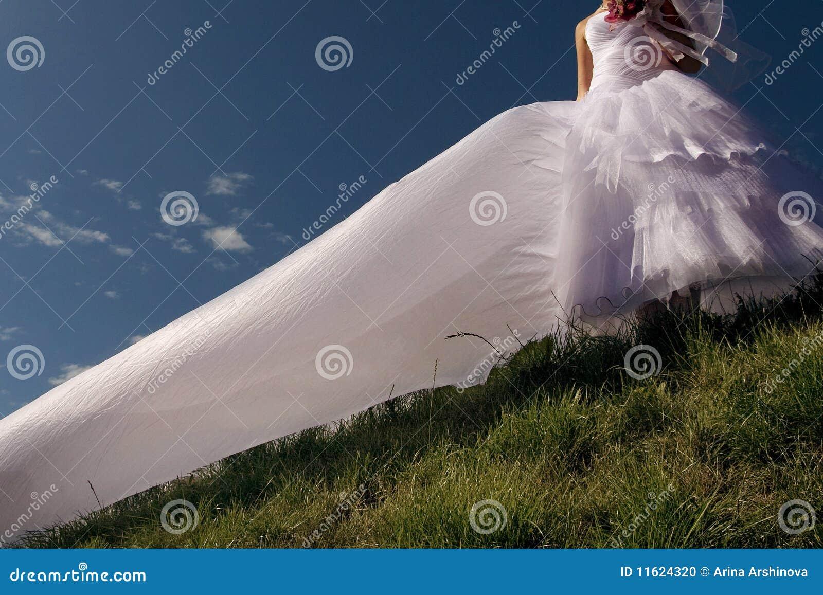 Bello cielo della sposa della priorità bassa