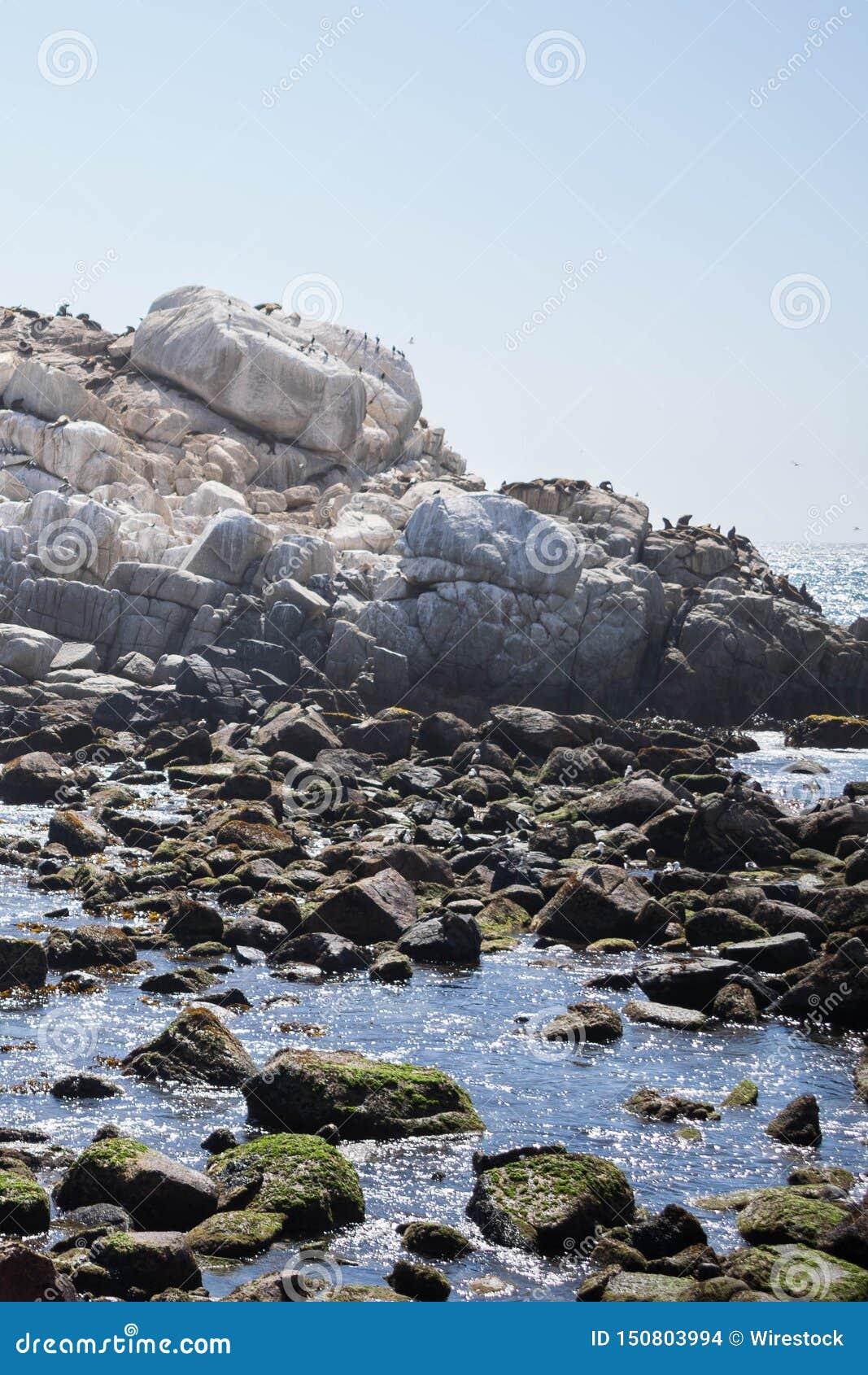 Bello colpo di piccolo lago con le rocce e di chiaro cielo nei precedenti