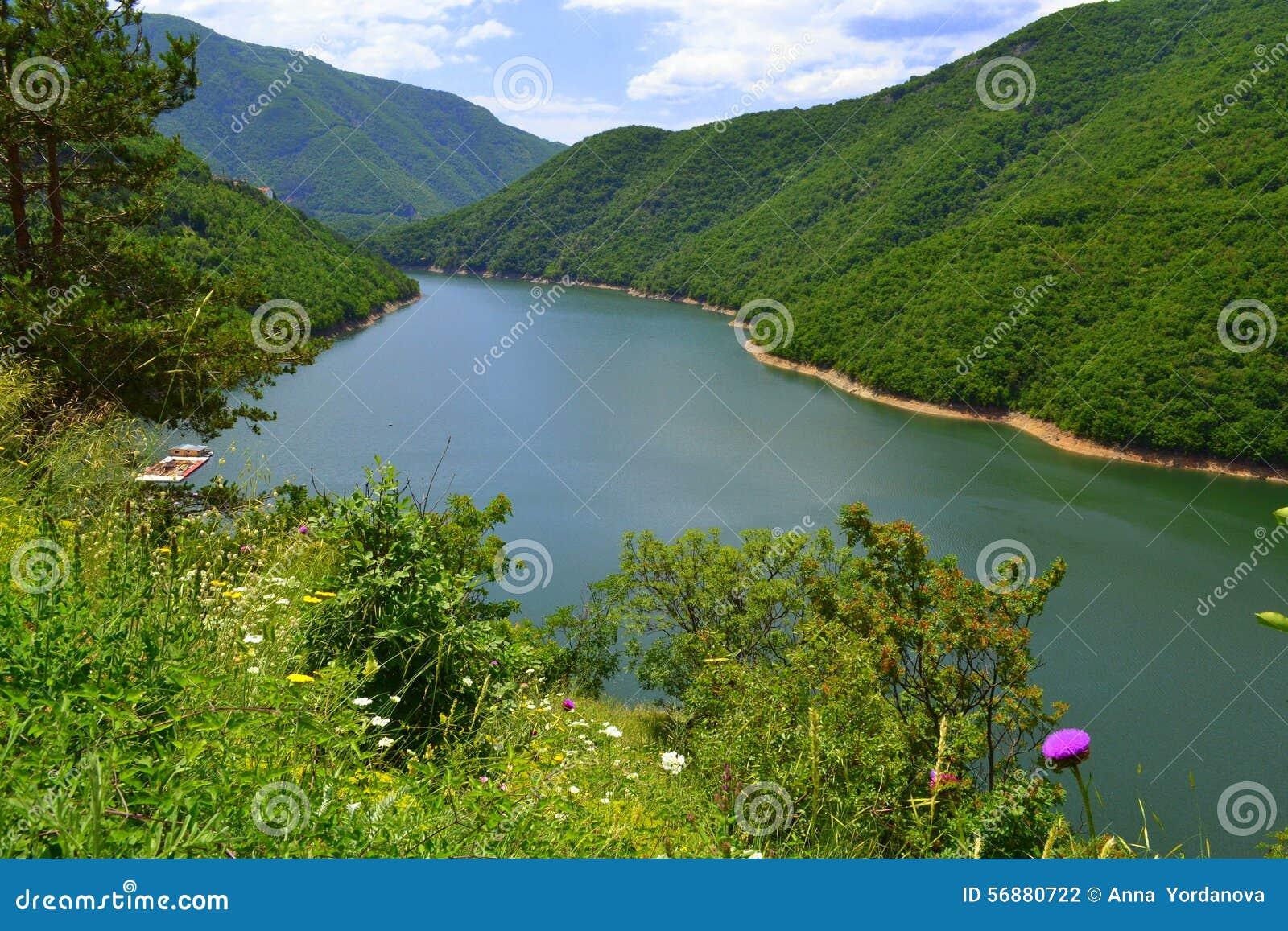 Bello fiume della montagna
