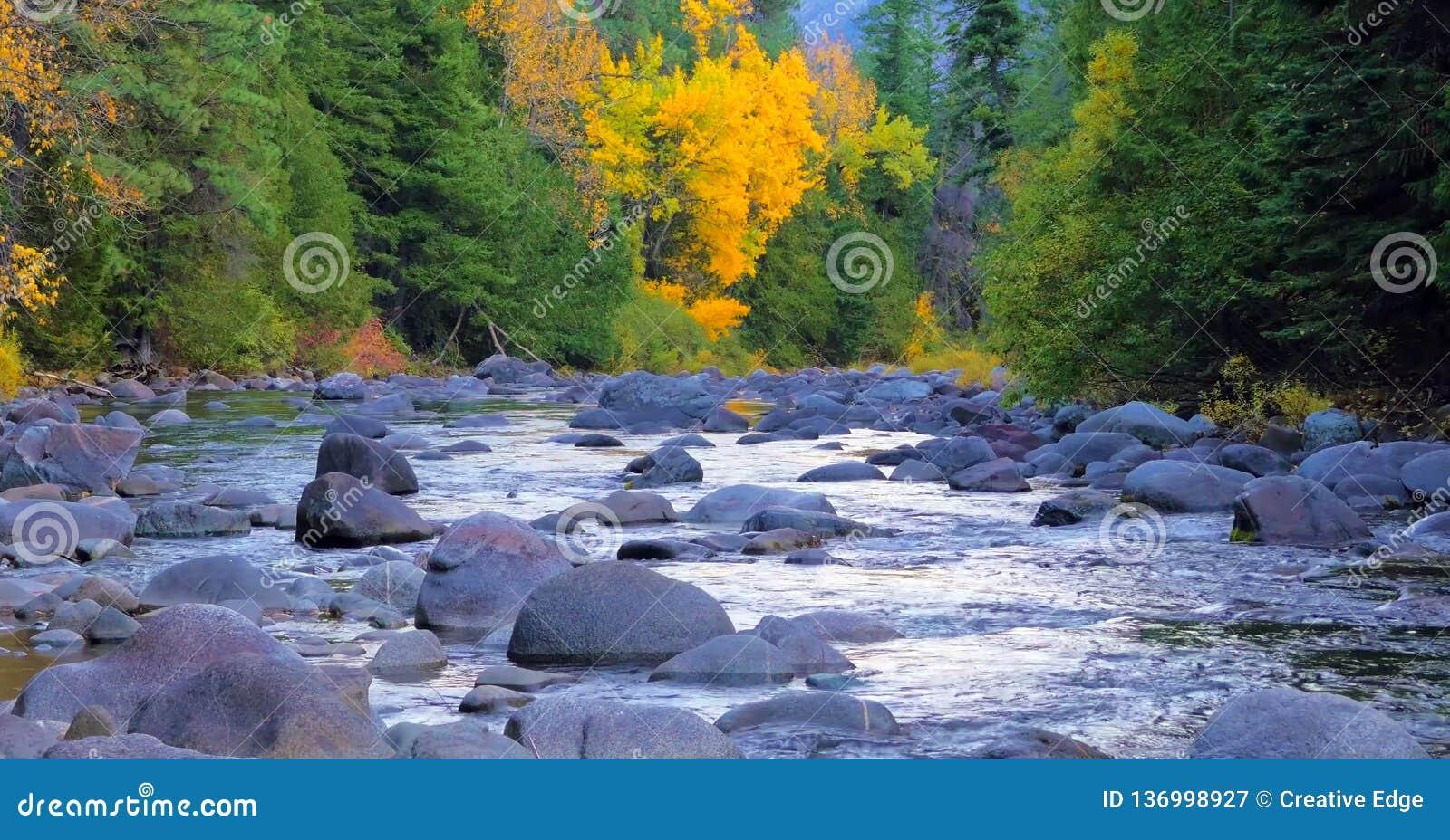 Bello fiume di Wenatchee - di Washington Autumn Nature Scenery