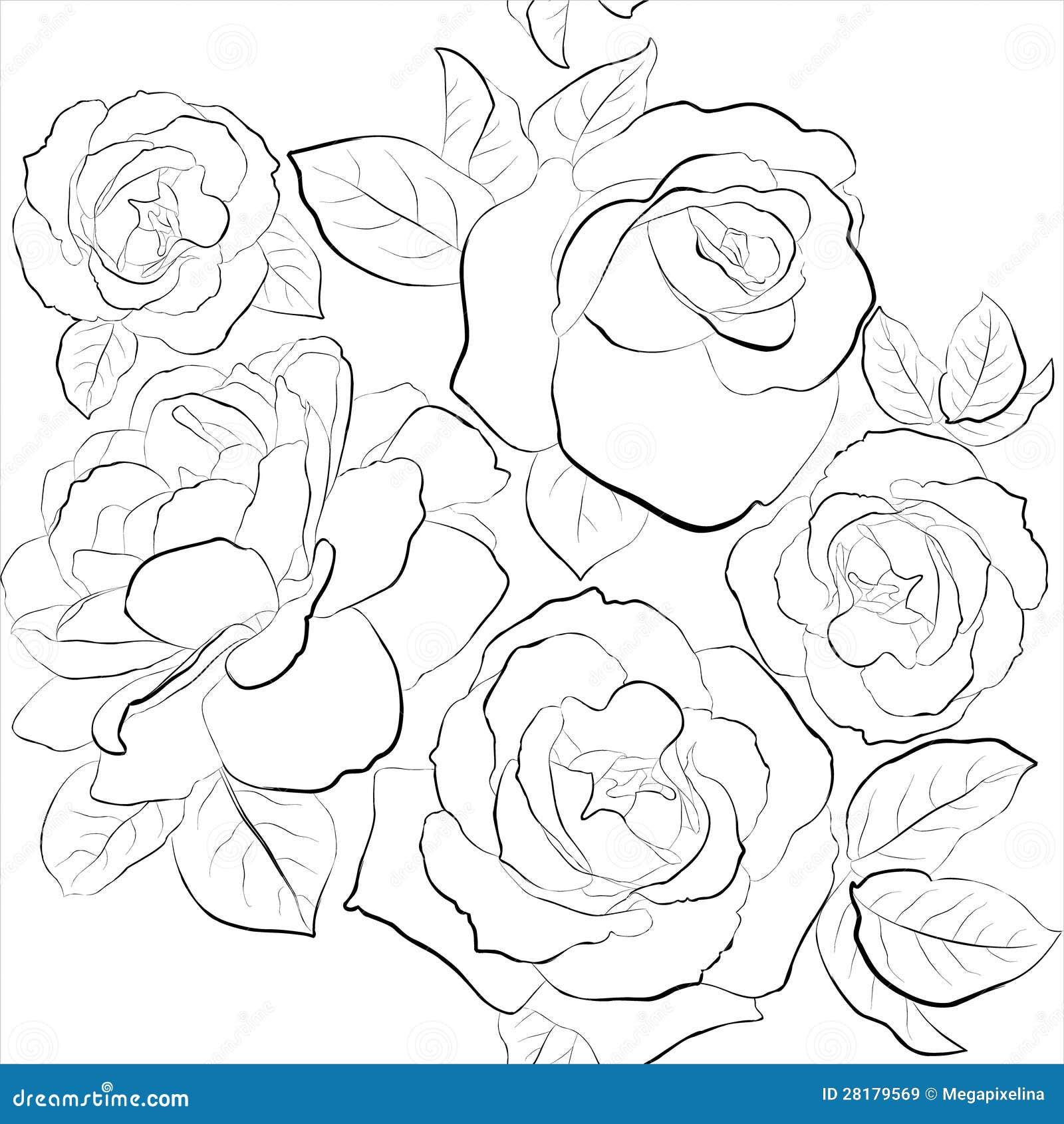 Bello fondo senza cuciture con le rose illustrazione for Colorare le rose
