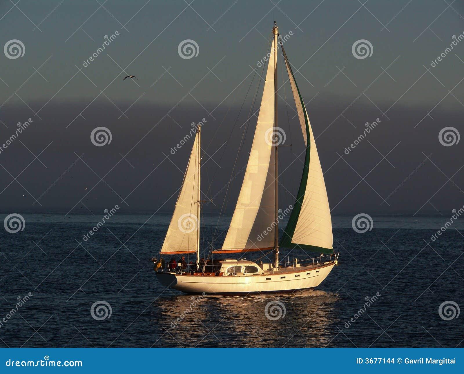 Download Bello Girare Della Barca A Vela Fotografia Stock - Immagine di nubi, albero: 3677144