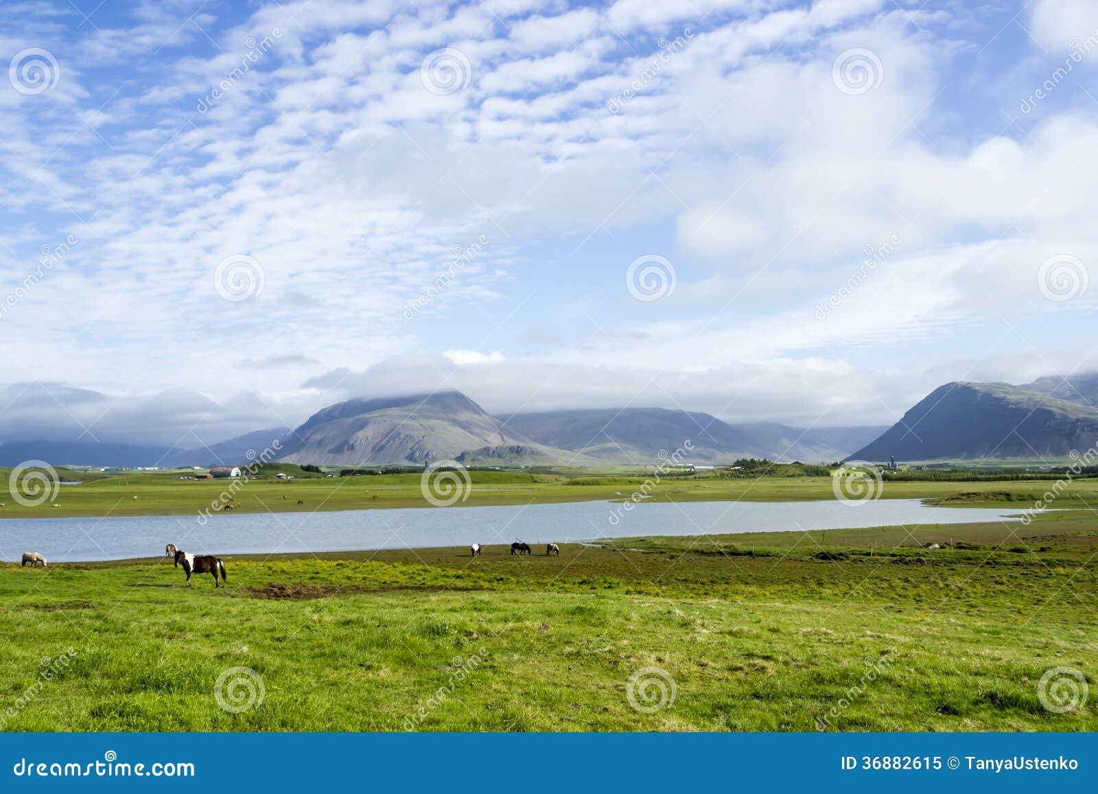 Download Bello lago immagine stock. Immagine di campagna, islandese - 36882615