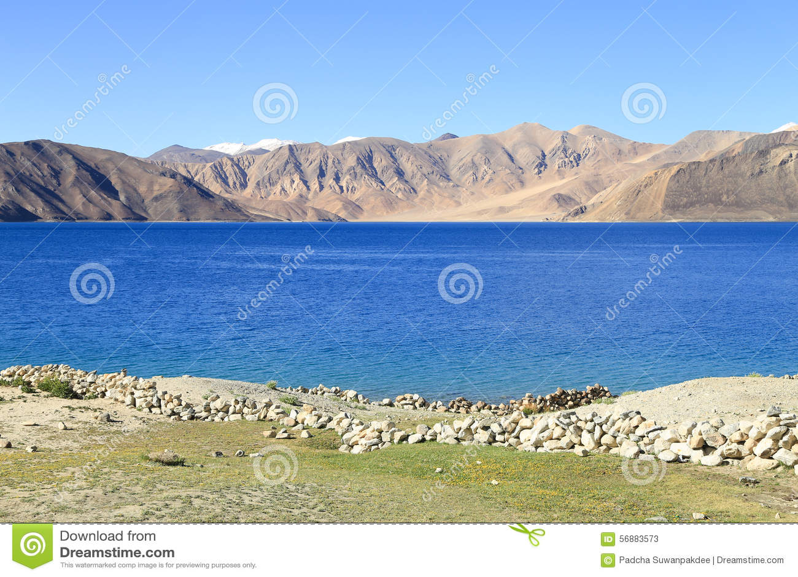 Bello lago Pangong del turchese in Leh, India