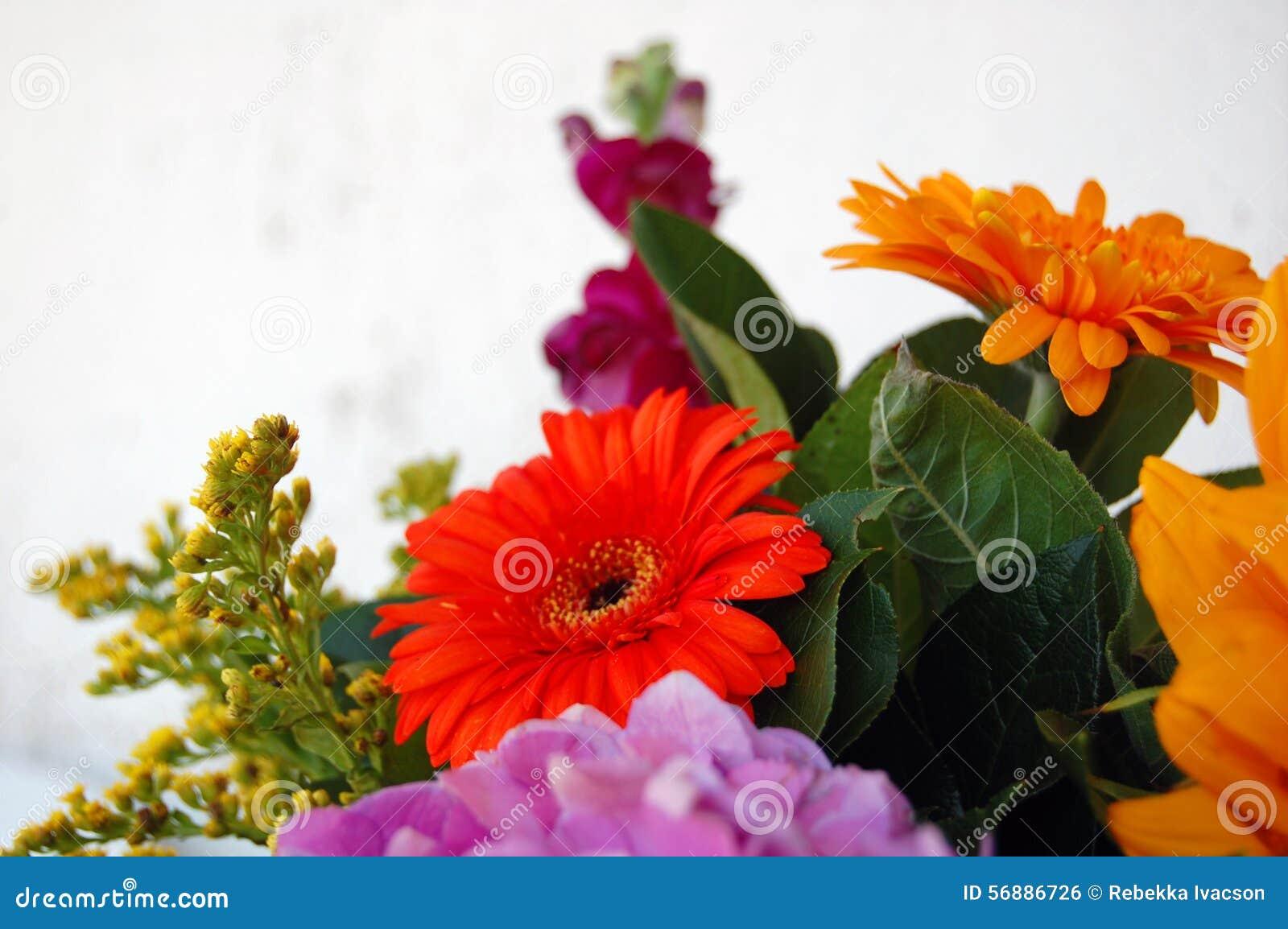 Bello mazzo dei fiori di estate
