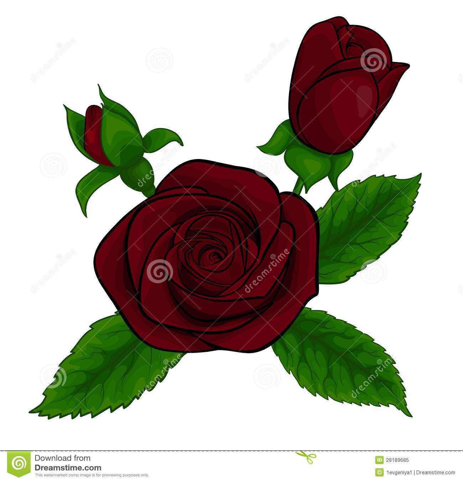 Bello Mazzo Delle Rose Rosse Elemento Decorativo Di Disegno