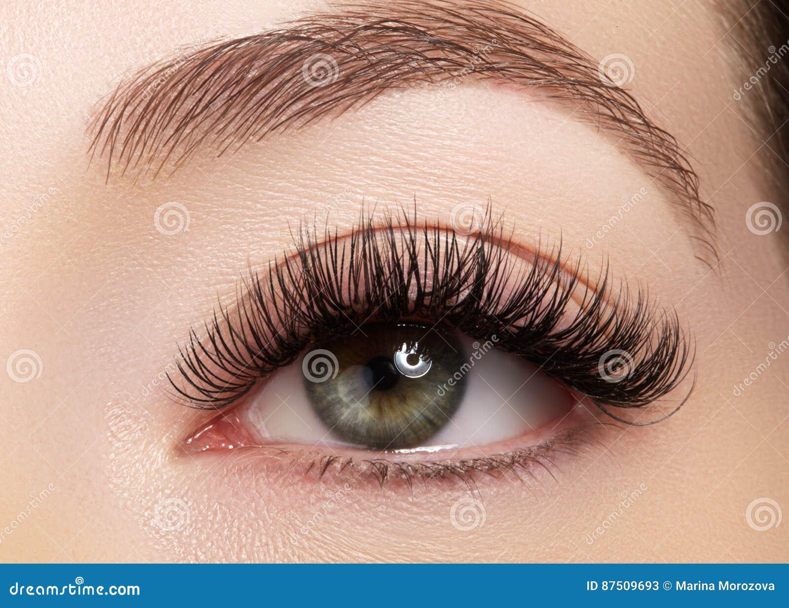 Bello occhio femminile con i cigli lunghi estremi, trucco nero della fodera Trucco perfetto, sferze lunghe Occhi di modo del prim
