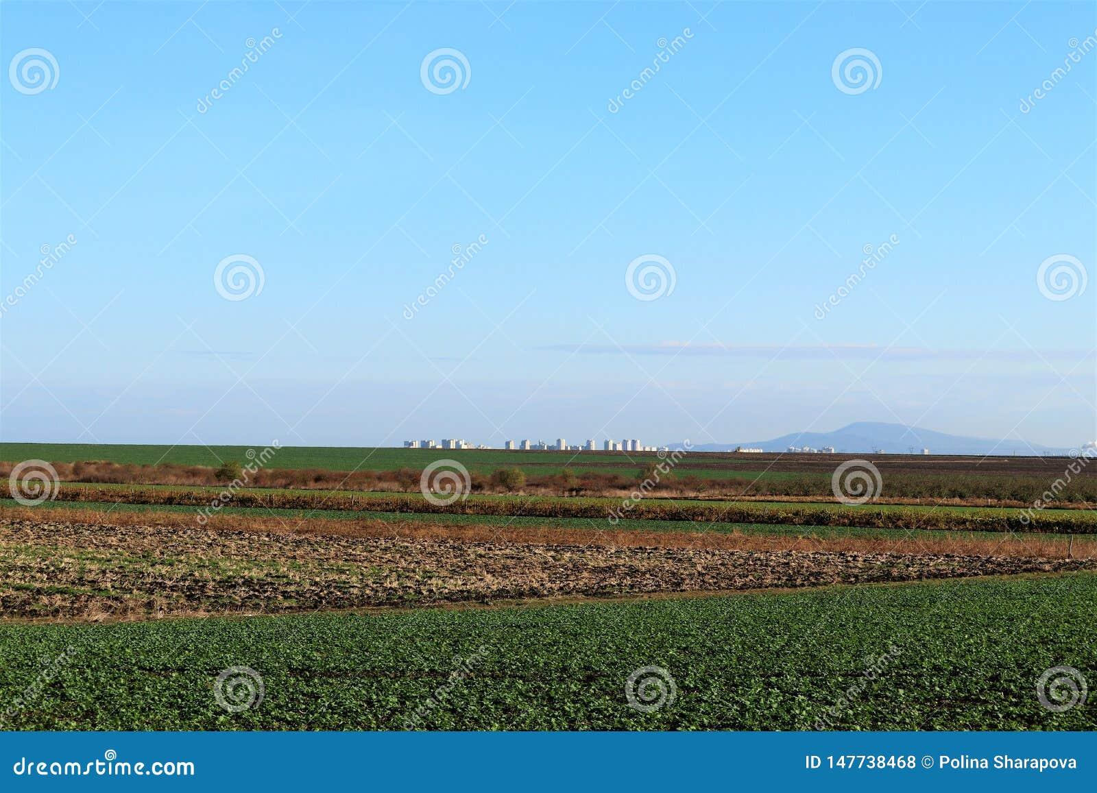 Bello paesaggio, chiaro giacimento arato verde e marrone del cielo blu, in Bulgaria Sui precedenti è la città Burgas
