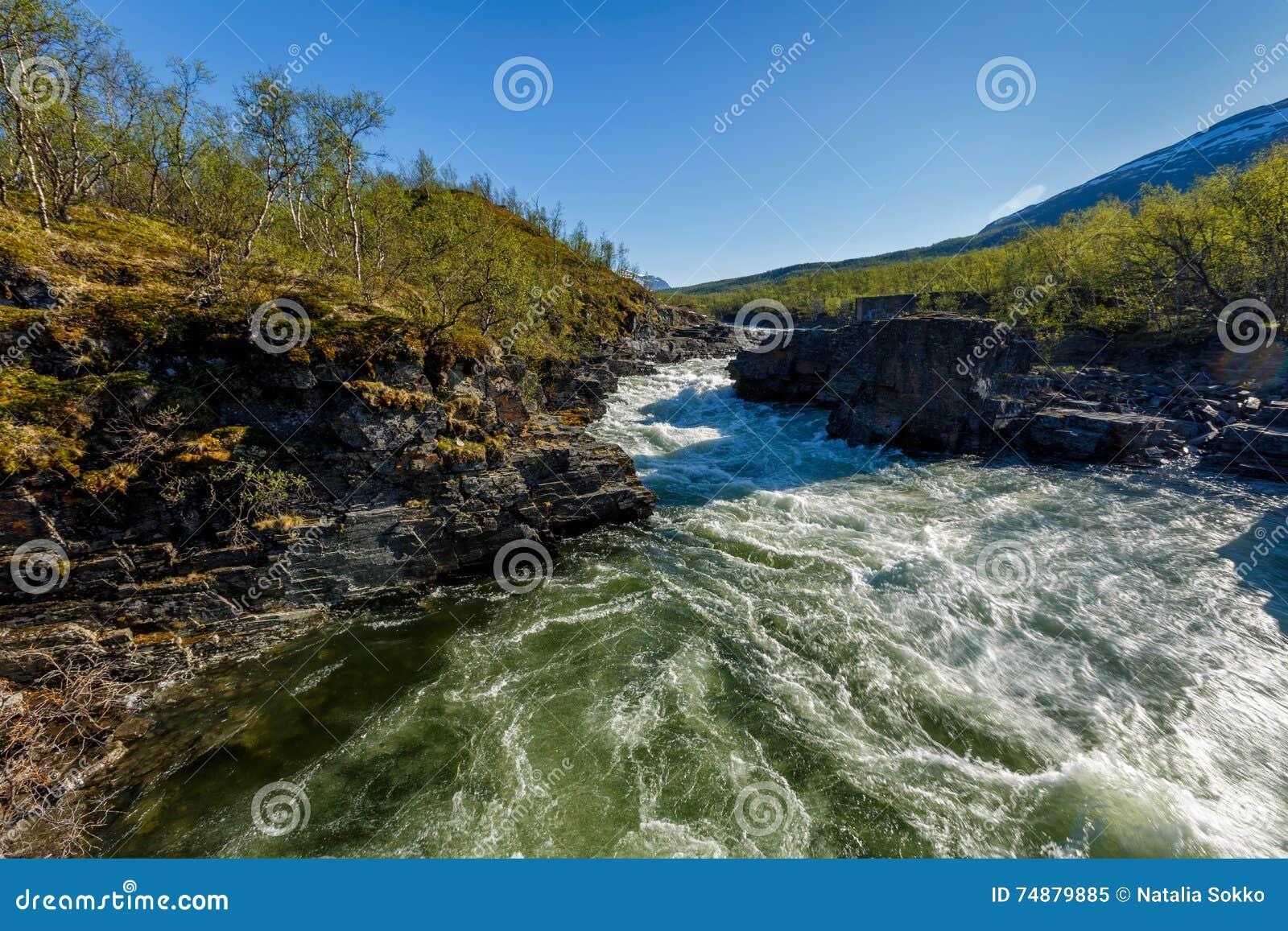 Bello paesaggio con il fiume ed il canyon
