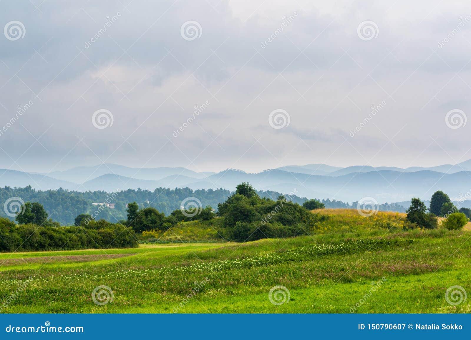 Bello paesaggio con il prato e le colline