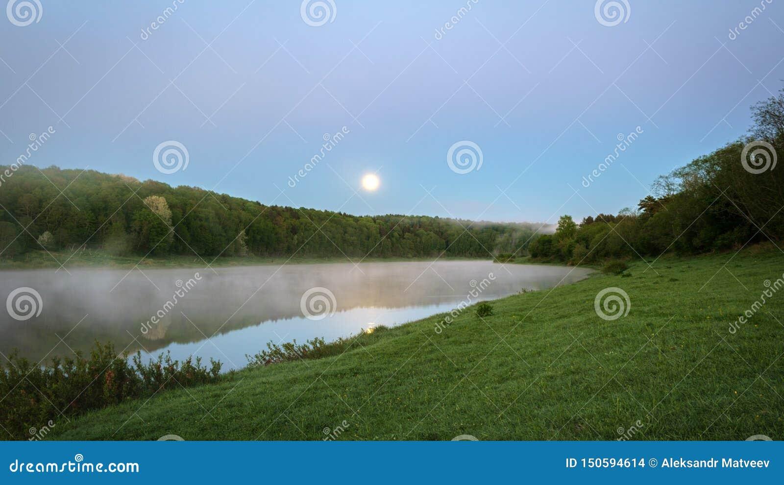 Bello paesaggio di notte, alberi nell acqua e tramonto sopra il fiume Volga Russia