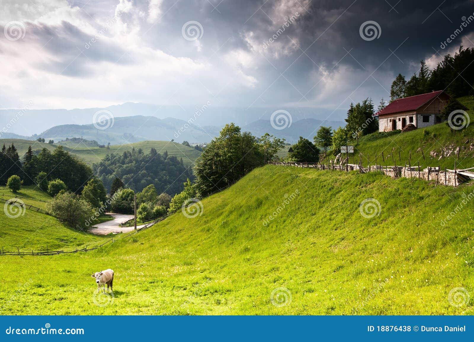 Bello paesaggio rurale dalla Romania
