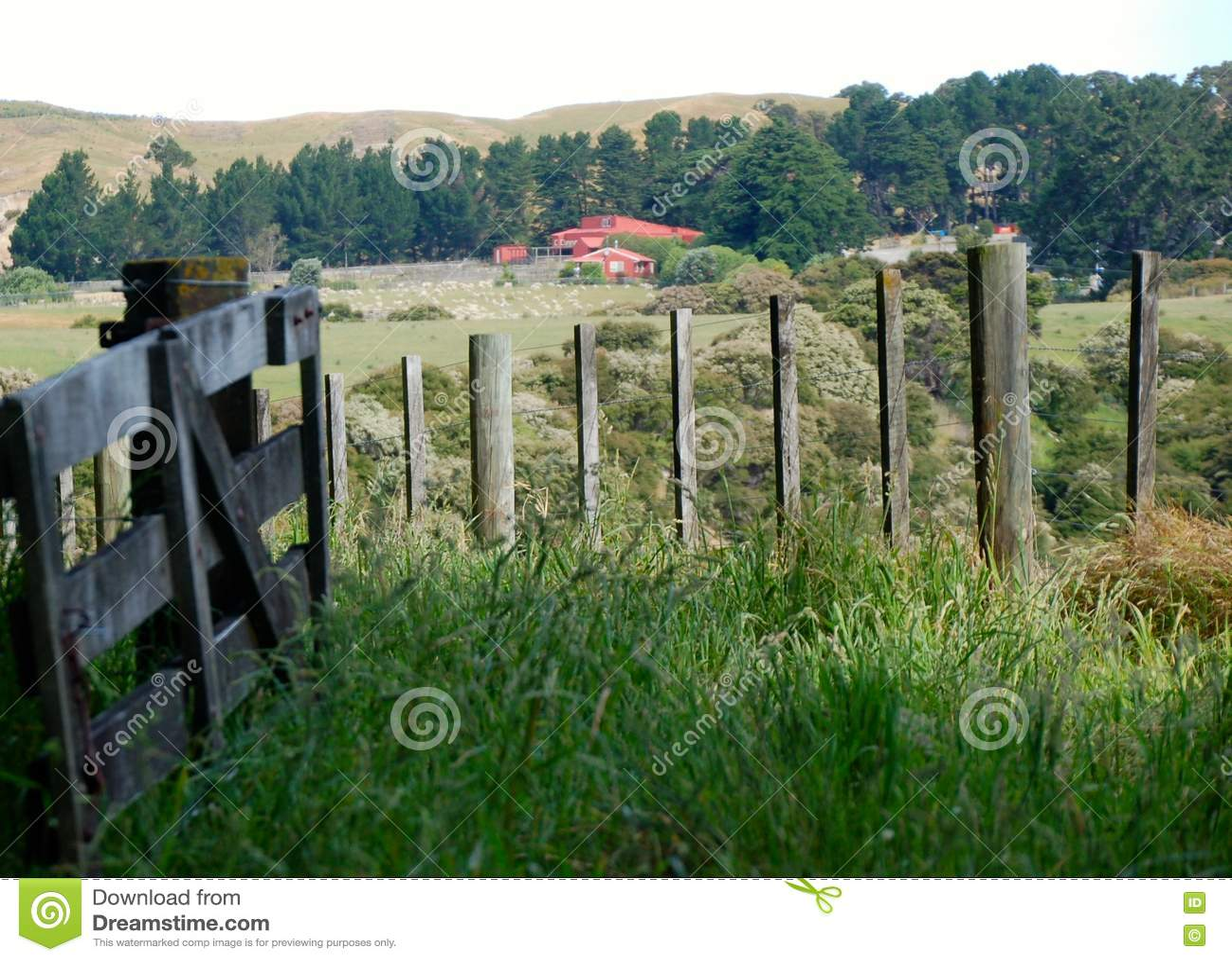 Bello paesaggio, terreno coltivabile, paesaggio rustico
