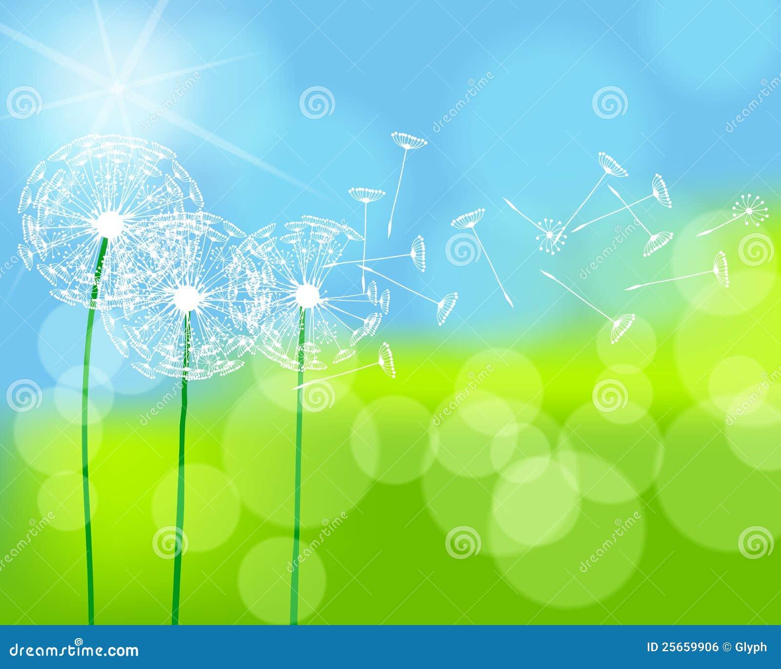 Bello prato verde della sorgente illustrazione vettoriale for Prato verde
