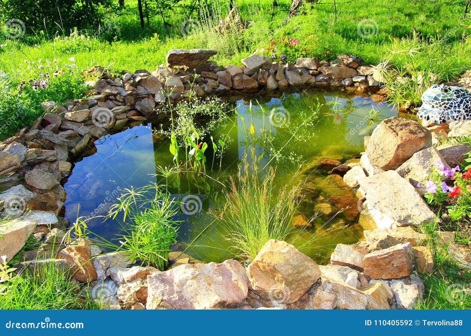 Bello stagno artificiale con vegetazione ricca e pietre un giorno di estate soleggiato di estate