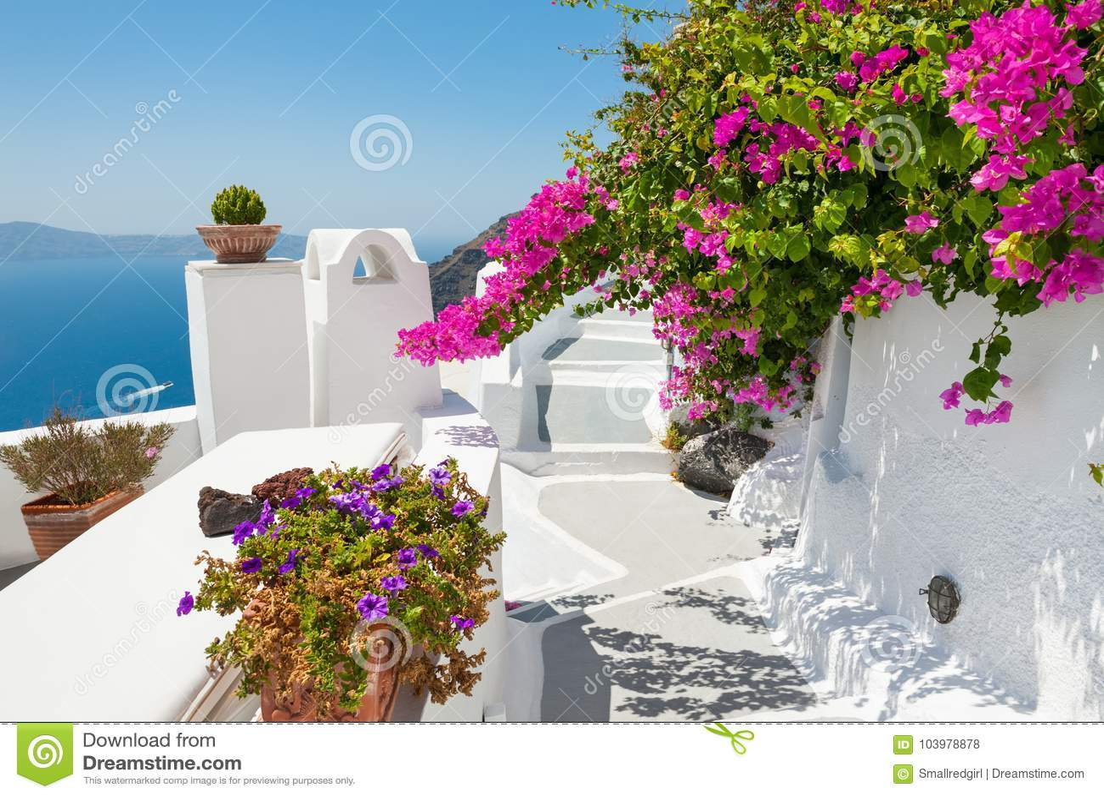 Bello terrazzo con i fiori rosa isola di santorini grecia