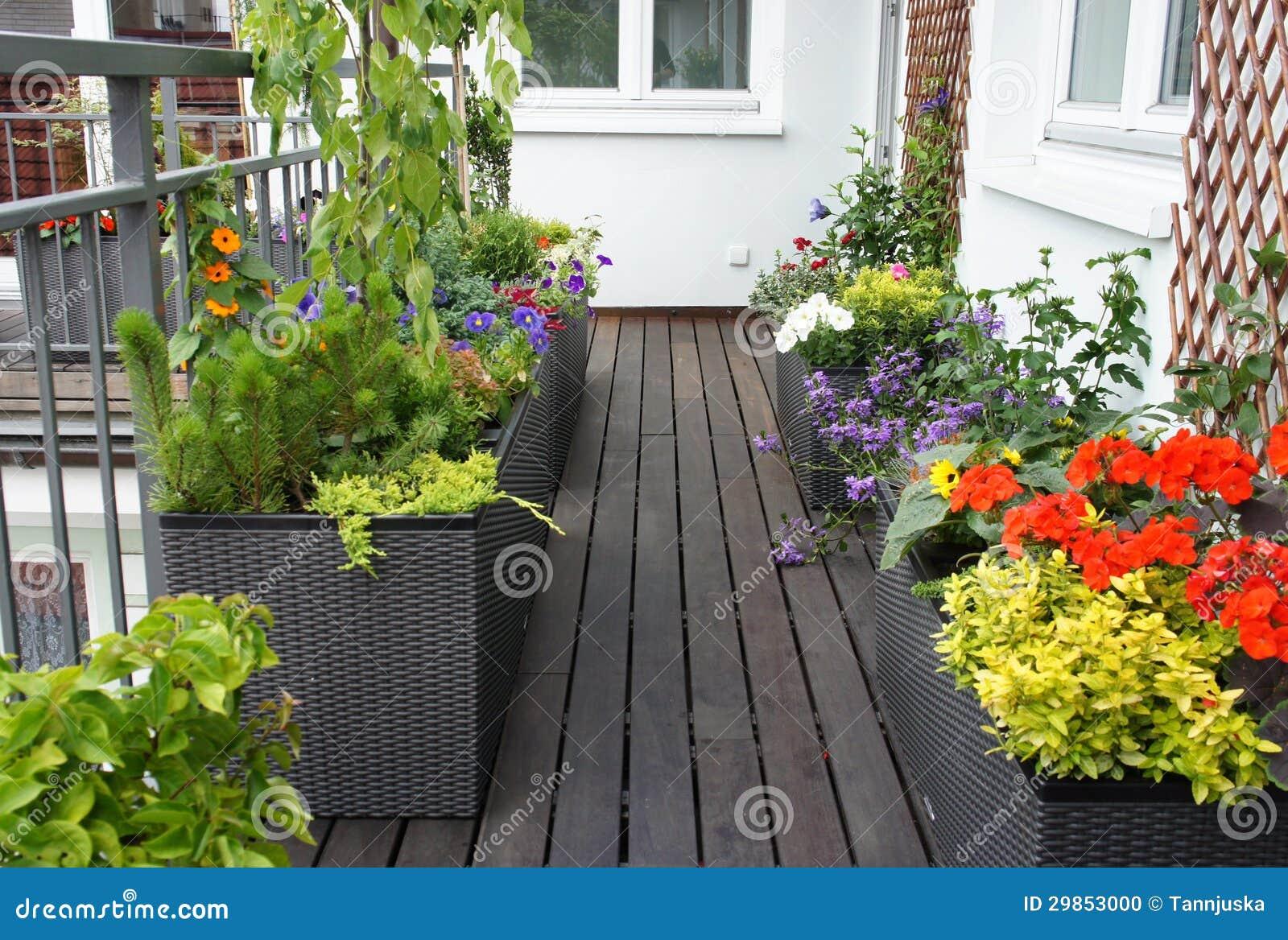 Bello Terrazzo Moderno Con Molti Fiori Fotografia Stock - Immagine: 29853000