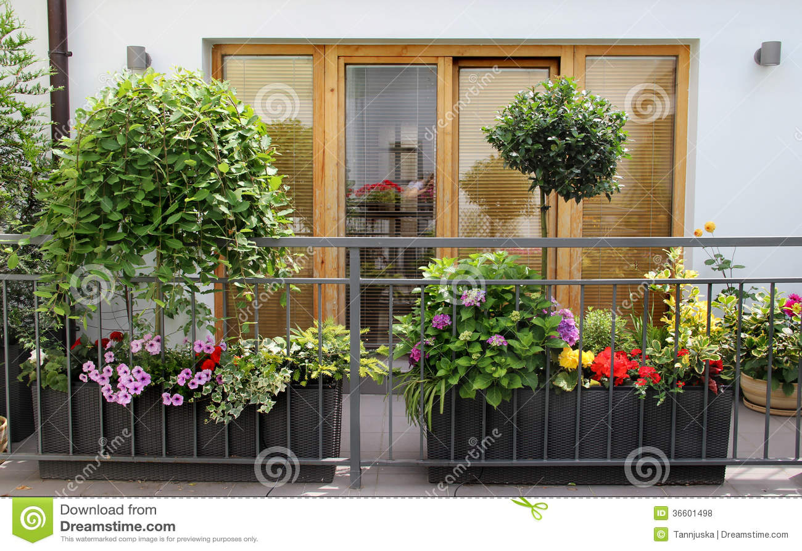 bello terrazzo moderno con molti fiori fotografie stock libere da diritti immagine 36601498. Black Bedroom Furniture Sets. Home Design Ideas
