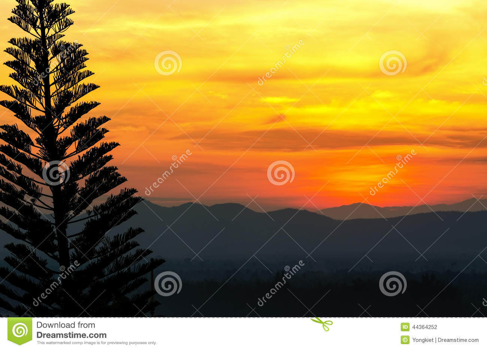 Bello tramonto del cielo