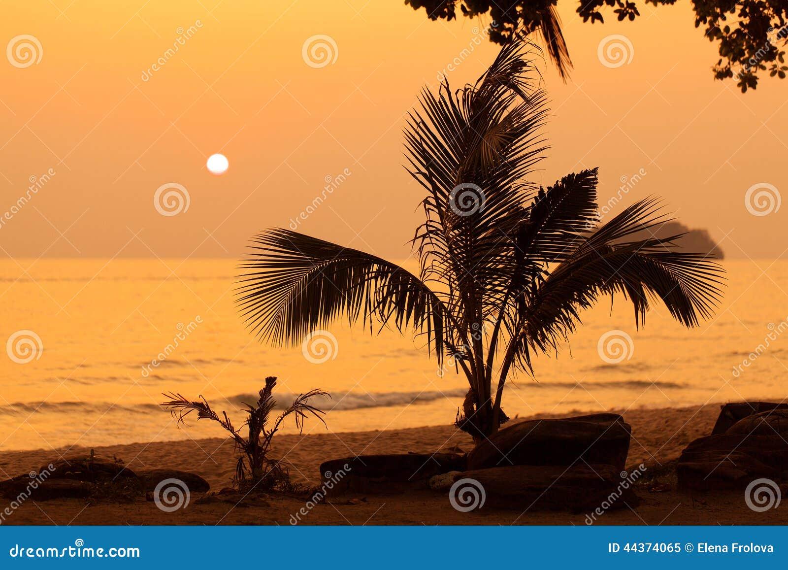 Bello tramonto sopra il mare