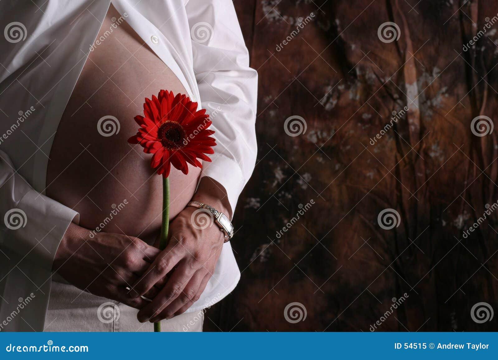 Download Belly2 enceinte image stock. Image du prévoir, rouge, reflétez - 54515