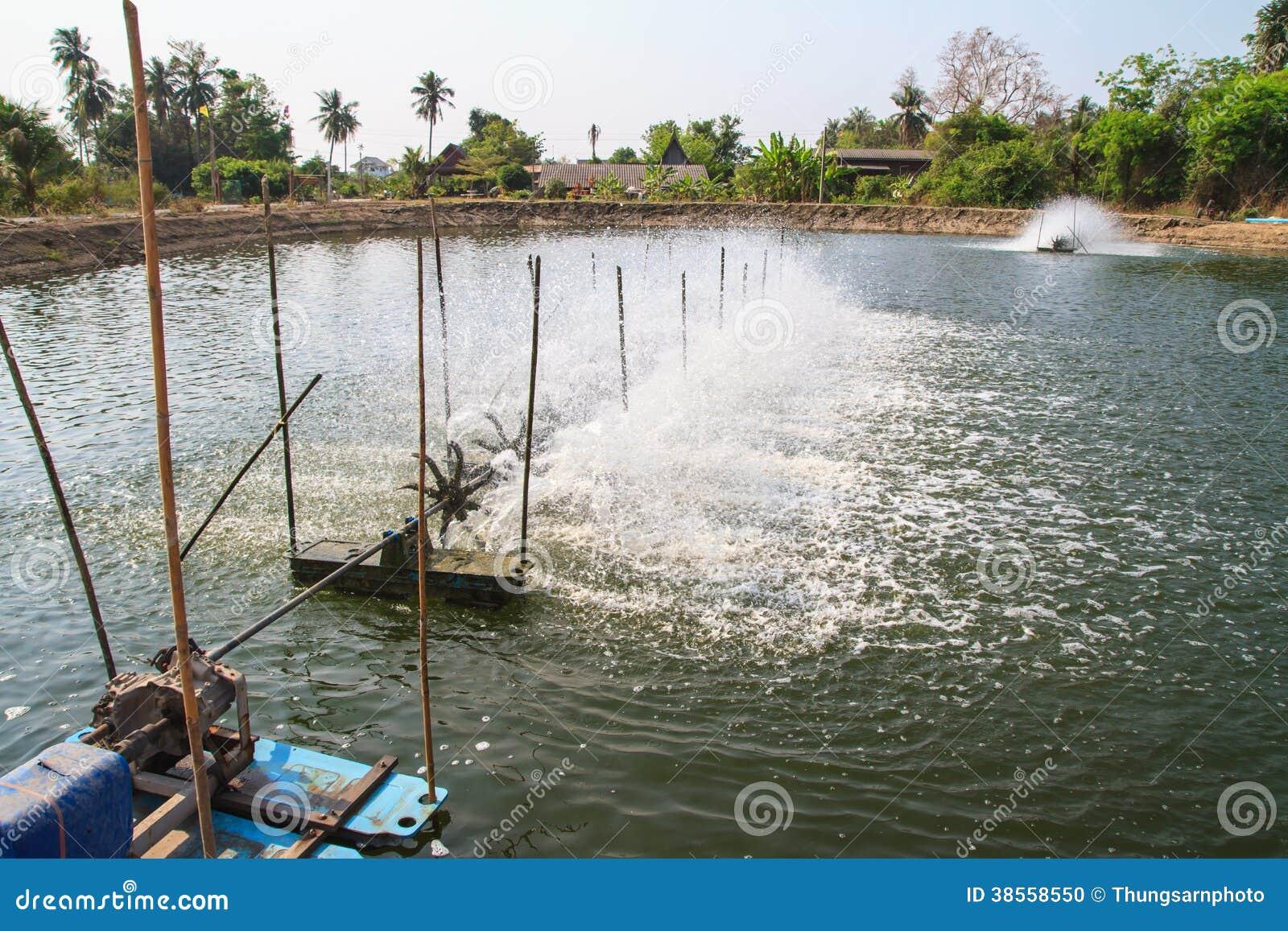 Beluchtingstoestel in het garnalenlandbouwbedrijf